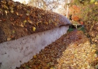 Cob Wall Autumn October small