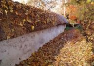 Cob Wall Autumn October small